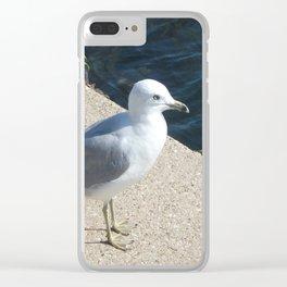 Seagull, Lake Michigan, Shoreline Clear iPhone Case