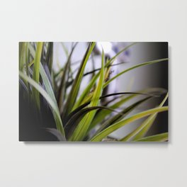 Inside A Plant Metal Print