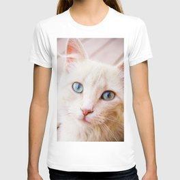 Inquisitive Kitty T-shirt