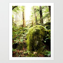 Mossy Boulder, Oregon, trail Art Print