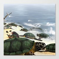 turtles Canvas Prints featuring Turtles by nicky2342
