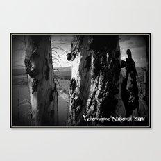 Rebirth in Yellowstone Canvas Print