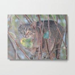 Tabby cat on the tree Metal Print