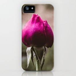 Single rose bud. Fantasy flower garden. Delicate elegant fuchsia pink summer rose. Melancholic moody dreamy artistic fine art photography. iPhone Case