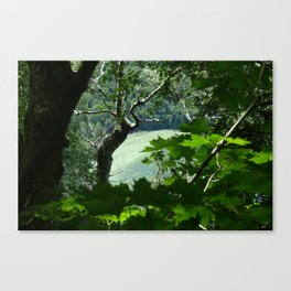 Willoughby Lake Canvas Print