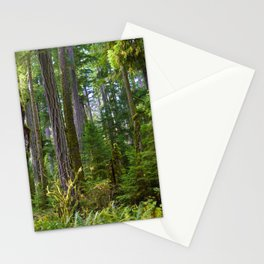 Cathedral Grove, Vancouver Island BC Stationery Cards