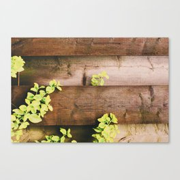 Country side mood Canvas Print