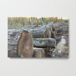 Loggin off Metal Print
