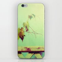 gypsy iPhone & iPod Skins featuring gypsy by Kelly Letky
