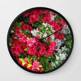 Pink & white Rhododendrons Wall Clock