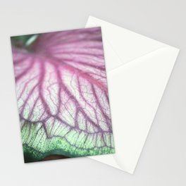 Longwood Gardens Autumn Series 270 Stationery Cards