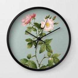 Vintage Red Bramble Leaved Rose Botanical Illustration on Mint Green Wall Clock