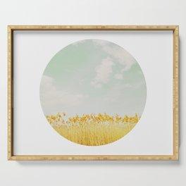CIRCULAR SERIES Landscape Reeds Serving Tray