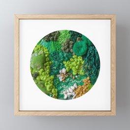 Moss Cluster Framed Mini Art Print