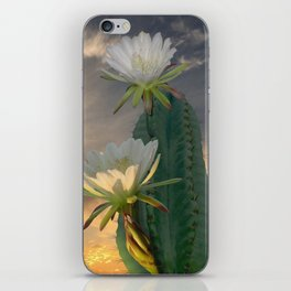 Peruvian Apple Cactus iPhone Skin