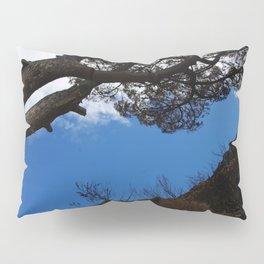Leaning Tree Pillow Sham