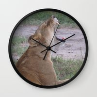 simba Wall Clocks featuring Sleepy Simba by Fer Ruz