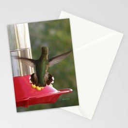 This Feeder is MINE! Stationery Cards
