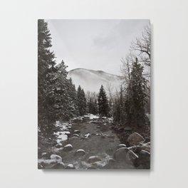 Mid Winter Metal Print