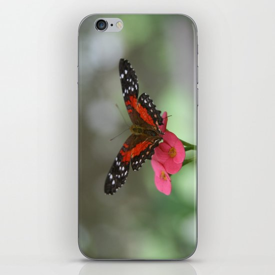 Butterfly House 2 iPhone & iPod Skin