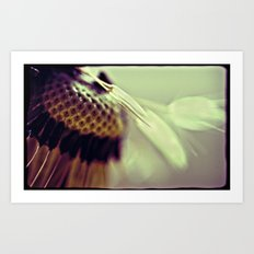 Dandelion Lomo Art Print