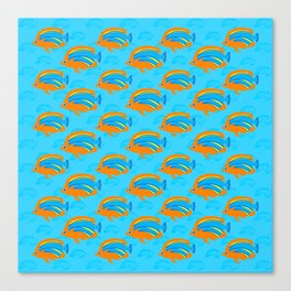 School of tropical fish Canvas Print
