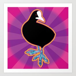 C is a Common coot Art Print