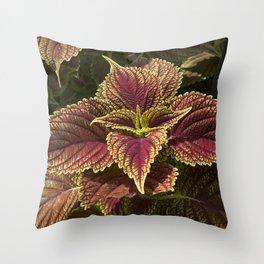 Green Coleus Plant Throw Pillow