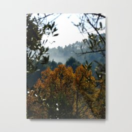 Winter's Colours Metal Print