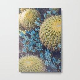 Boho Cactus Garden Metal Print