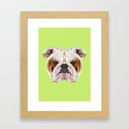 English Bulldog // Green Framed Art Print