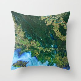 132. Winds Trigger Pond Growth Throw Pillow