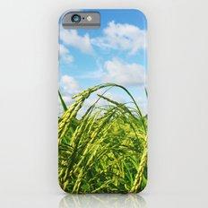 Ripe Rice Slim Case iPhone 6s