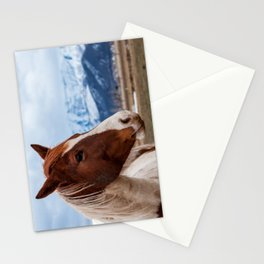 Wasatch Mountains Winter Horse - Heber - Utah Stationery Cards