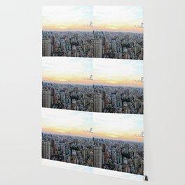 Sao Paulo Aerial Wallpaper