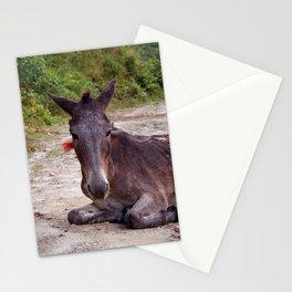 Resting Mule on Annapurna Trekking Path Stationery Cards