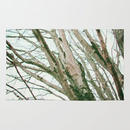 Winter Trees Rug