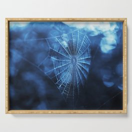 Spider Web in Blue Serving Tray