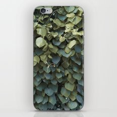 Green Leaves at the End of Summer iPhone & iPod Skin
