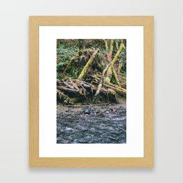 Oregon 6 Framed Art Print