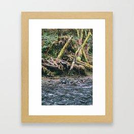 Oregon 6 Framed Art Print