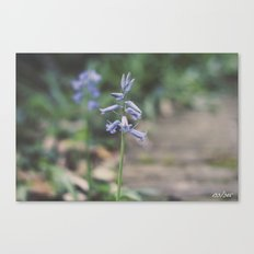 Every Flower is a Soul Blossoming in Nature Canvas Print