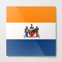 flag of Albany Metal Print