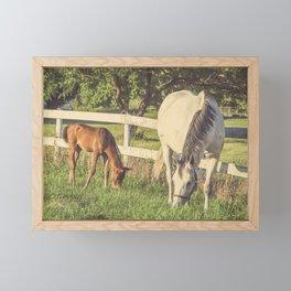 Mare and Foal // Horses Framed Mini Art Print
