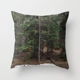 on the trail in breck Throw Pillow