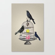 Keeper Crows Canvas Print