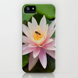 Bee with Pink Waterlily iPhone Case