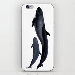 False killer whale iPhone Skin
