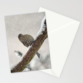 Facing the Storm (House Finch) Stationery Cards
