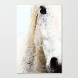Waiting 2 - Horse Art By Sharon Cummings Canvas Print